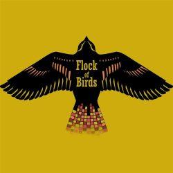 bird copyسسسس Flock of Birds