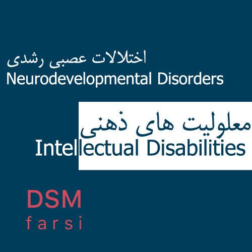 E4 DSMfarsi